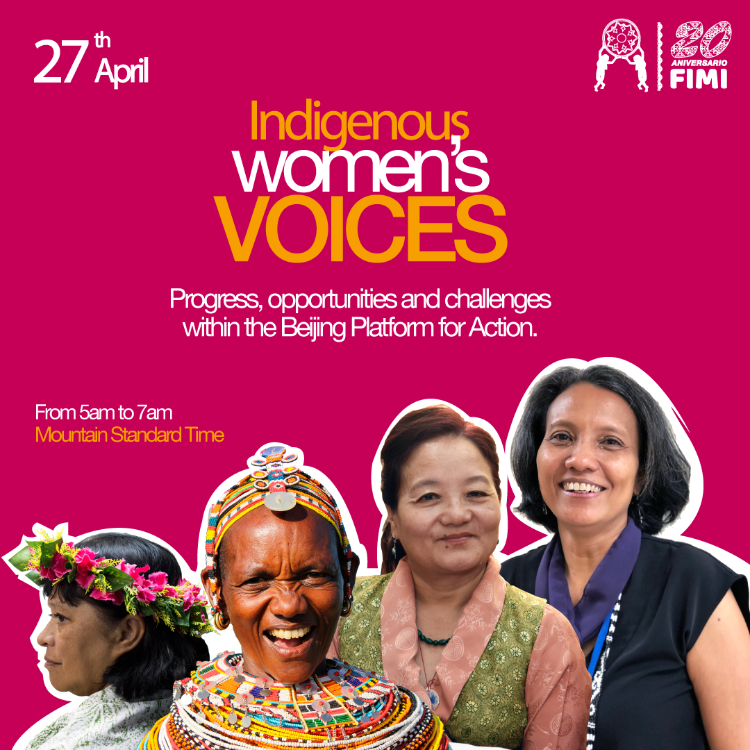 When Advocacy Finds New Spaces: Voices of Indigenous Women Webinar